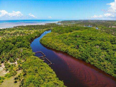 Rio Tatuamunha onde é reallizada a recuperação dos peixes boi, que posteriormente são devolvidos a natureza. Foto: Rafael Munhoz