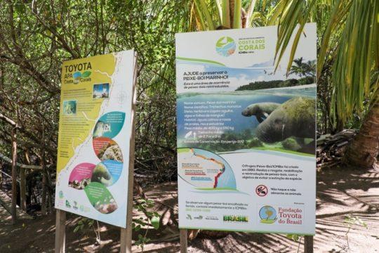 Projeto APA Costa dos Corais, parceria entre a Fundação Toyota, SOS Mata Atlântica e ICMBio. Foto: Rafael Munhoz